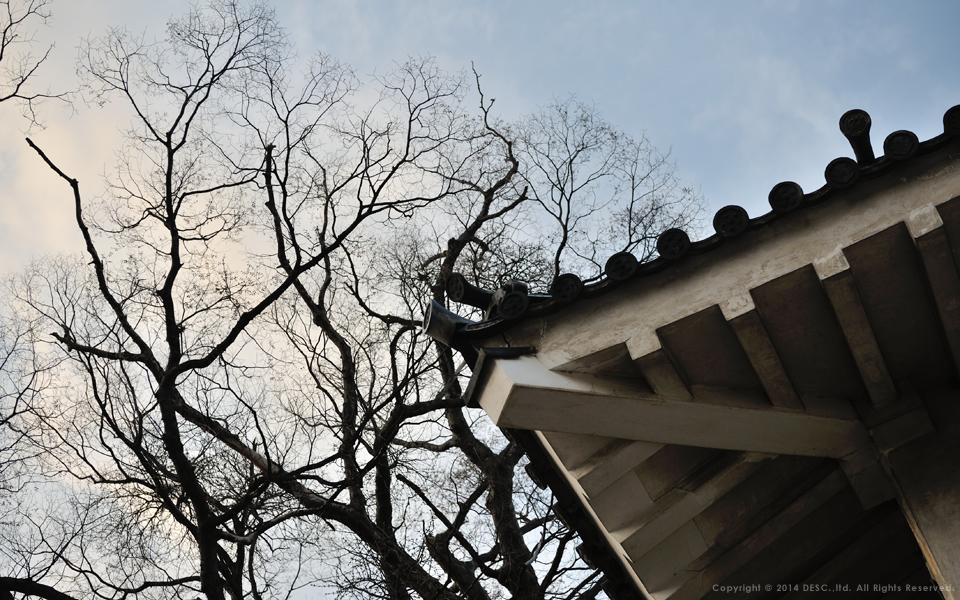 松本城の瓦と空